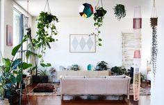 Estas plantas vão purificar o ar de sua casa e ambiente de trabalho