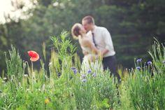 Casarei - www.casarei.net
