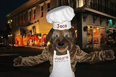 Jaco's Bar & Grille in Florida uses a mascot created by BAM! Mascots to build brand loyalty within their community. Jaco, Restaurant Branding, Photo Galleries, Florida, Marketing, Tips, Fictional Characters, Advice, The Florida