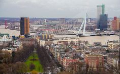 Rotterdam Nereler Gezilir Rotterdam, San Francisco Skyline, Paris Skyline, Travel, Bridge, Viajes, Destinations, Bridges, Bro