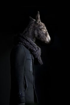 Donkey Portrait Number Thirty Nine by Miguel Vallinas Prieto. Rise Art. Donkey. Coat. Figure. Taxidermy. Models. Photography.