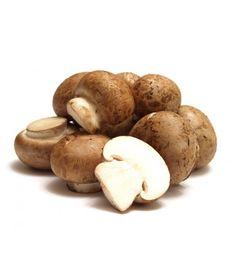Steinchampignon - im Internet bestellbare Pilzbrut für die Pilzzucht