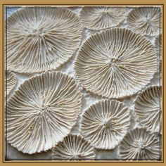 Color, Pattern and Texture, small coral wall hanging Patterns In Nature, Textures Patterns, Coral Walls, Paperclay, Back To Nature, Natural Forms, Natural Texture, Ceramic Art, Ocean