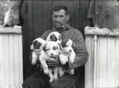 Shackleton Exhibition: Tom Crean and his pups