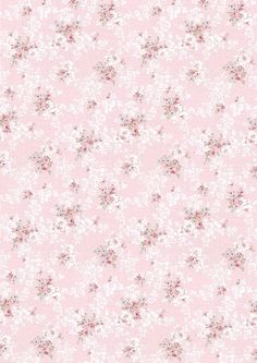 wallpapers-shabby Chic