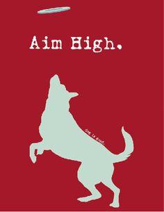 Dogly advice