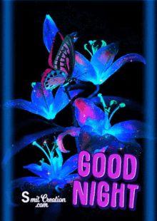 Good Night Family, Good Night For Him, New Good Night Images, Good Night Love Messages, Cute Good Night, Good Night Friends, Good Night Greetings, Good Night Gif, Good Night Wishes