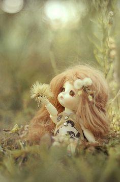 My little fairy ~