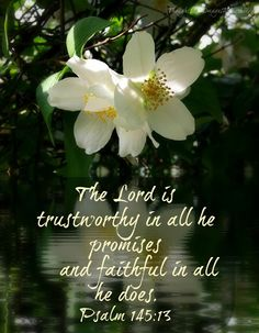 The Lord is trustworthy in all he promises and faithful in all he does. Psalm 145:13