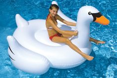 Giant Inflatable Swan 101803