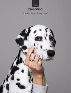 Biocanina: Pet, 2 | Ads of the World™