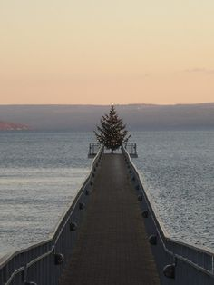 Skaneateles Lake, New York (Finger Lakes) - Lit Christmas tree on a pier at dusk.