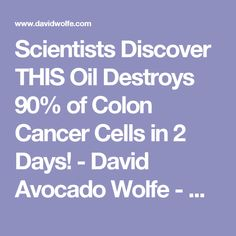 Scientists Discover THIS Oil Destroys 90% of Colon Cancer Cells in 2 Days! - David Avocado Wolfe - DavidWolfe.com