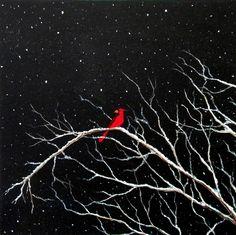 Cardinal on Snowy Night - Sabrina Zbasnik