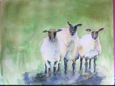 """Three Sheep"" Watercolor"
