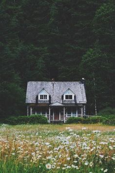 twoheartsforlove:  Lake Crescent Station by (zachreed)