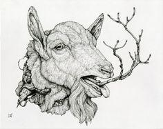Lauren Marx's Atrophying Animal Universe: tumblr_n5xq4e5Hk81r3ao2co1_500.jpg