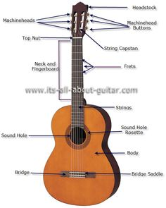mandolin parts google search lyons site plan mandolin pinterest mandolin. Black Bedroom Furniture Sets. Home Design Ideas