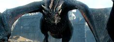 game of thrones Drogon Game Of Thrones, Game Of Thrones Dragons, Got Dragons, Game Of Thrones Art, Mother Of Dragons, Weird Creatures, Fantasy Creatures, Mythical Creatures, Game Of Thrones Tumblr