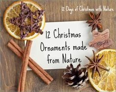 "On the twelfth day of Christmas, mother nature gave to me….. 12 Homemade Christmas Tree ornaments crafted from nature! I admit that I am on a mission to destroy purchased Christmas ornaments. The popularity of my post, ""14Continue reading"
