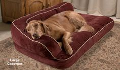 Luxury Chaise Lounge Dog Bed