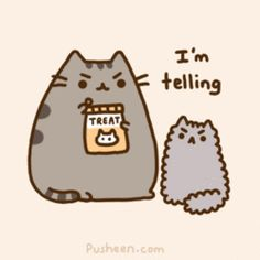 "Pusheen the cat ""Joys of having a younger sibling"". <3"