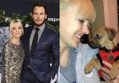 So I don't like Chris Pratt anymore...  He (and his wife) abandoned a cat and a dog. The dog was found some days ago, starving... on the street :/ poor baby :/ article, in PL: Chris Pratt i Anna Faris PORZUCILI PSA! Został znaleziony na ulicy // http://www.pudelek.pl/artykul/101095/chris_pratt_i_anna_faris_porzucili_psa_zostal_znaleziony_na_ulicy/