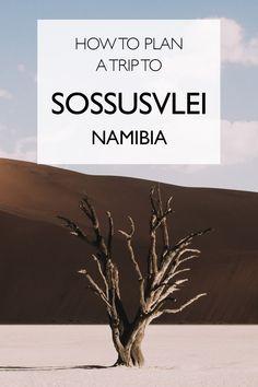 How to Plan a Trip to Sossusvlei, Namibia