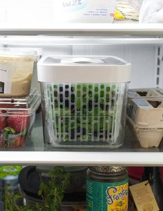 OXO's GreenSaver Produce Keeper Keeps Your Salad Greens Fresh All Week Long — Product Review