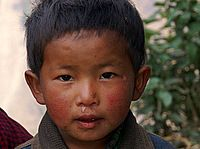 Trekkingadventure - Tamang Heritage Trail 2009