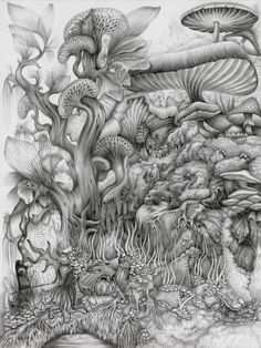 Inevitability - 8.5 x 10.5 pencil drawing by Rachel M. Bray Gorgeous gradients. I love complicated landscape drawings!