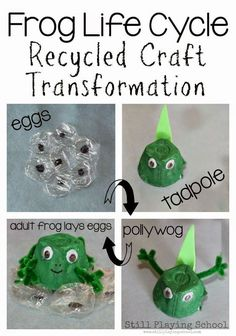 Forg Life Cycle out of Recycled Materials!!  This recycled craft is perfect for reviewing a frog's life cycle with students! It is easy to transform the tadpole into a frog as they retell the process in their own words! Great for students with special learning needs.  Visual and hands on! Get all the directions at:  http://www.stillplayingschool.com/2015/03/frog-life-cycle-recycled-craft.html