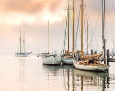 "Cape Cod Life Publications on Instagram: ""Vineyard Haven 🤩 by @swkcam"" Vineyard Haven, Cape Cod, Massachusetts, Sailing Ships, Public, Boat, Life, Instagram, Cod"