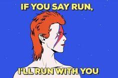 Ziggy ~ I'll run with you