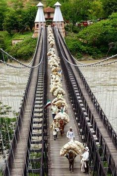 Campesinos transport their produce across the Puente de Occidente near Santa Fe de Antioquia, Colombia Places Around The World, Travel Around The World, Around The Worlds, Colombia South America, South America Travel, Beautiful Places To Visit, Places To See, Santa Fe, Colombia Travel