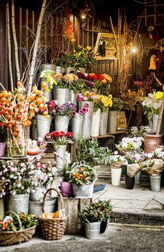 Flower Shop, Borough Market, London