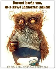 This what I look like in the morning because I am a night owl. <<<<<<<< partly true- if the owl was female XD Illustration Art, Illustrations, Owl Art, Portrait Art, Make Me Smile, Owls, Funny Pictures, Funny Images, Monday Pictures