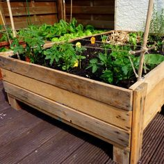 Container Gardening: DIY Planter box from pallets--I also like her plant support idea : )