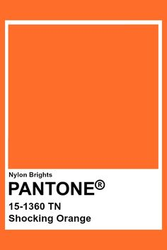 New Pantone ~~~~*~~~ Pantone Color Chart, Pantone Colour Palettes, Orange Color Palettes, Colour Pallette, Pantone Colours, Paleta Pantone, Pantone Orange, Pantone Swatches, Color Swatches