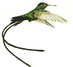 Dr. Bird.....Jamaica's National Bird