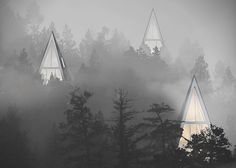 Pine 2 Futuristic & Sustainable Eco Lodges in the Mountains
