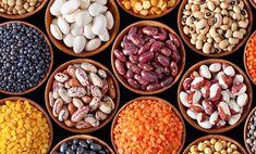 Perché il 2016 sarà l'anno internazionale dei legumi - VegNess