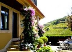Wonderful place to stay- vineyard and farmhouse in the Douro wine region, Portugal. Details here: http://www.hideawayportugal.com/modules/property/listing-1027.htm#