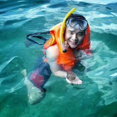 Stingless jellyfish. Kakaban Island