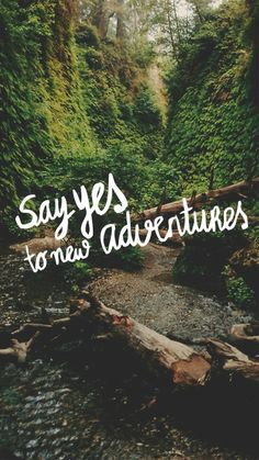 New Travel Wallpaper Quotes Inspirational Ideas Travel Qoutes, Best Travel Quotes, New Travel, Travel Goals, Food Travel, London Travel, Travel Usa, Adventure Quotes, Adventure Travel