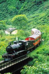 Train - Nuwara eliya