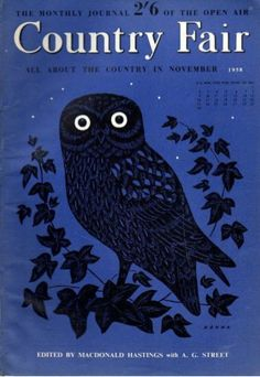 country fair magazine cover - owl {delicious industries}
