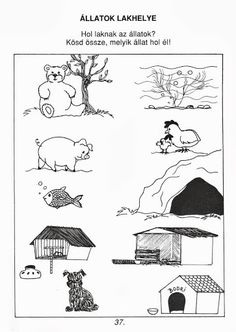 Én és a természet - Ibolya Molnárné Tóth - Picasa Web Albums Printable Preschool Worksheets, Preschool Lesson Plans, Worksheets For Kids, Toddler Preschool, Kids Learning Activities, Educational Activities, Animals And Their Homes, Kids Daycare, School Clipart
