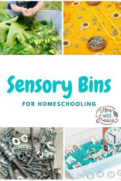 These sensory bins are perfect for homeschooling preschool and kindergarten! They are full of learning with literacy and numeracy themes and loads more as well! Great sensory play to help kids calm and center as well as learn. Educational Activities For Preschoolers, Literacy And Numeracy, Preschool Science Activities, Literacy Skills, Preschool Classroom, Kindergarten, Play Activity, Number Activities, Activity Ideas