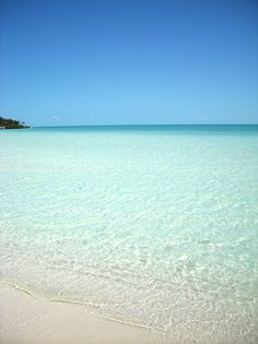 My pictures - Taylor Bay Beach, Turks & Caicos - will be visiting Grand Turks on our New Year's Cruise!!!
